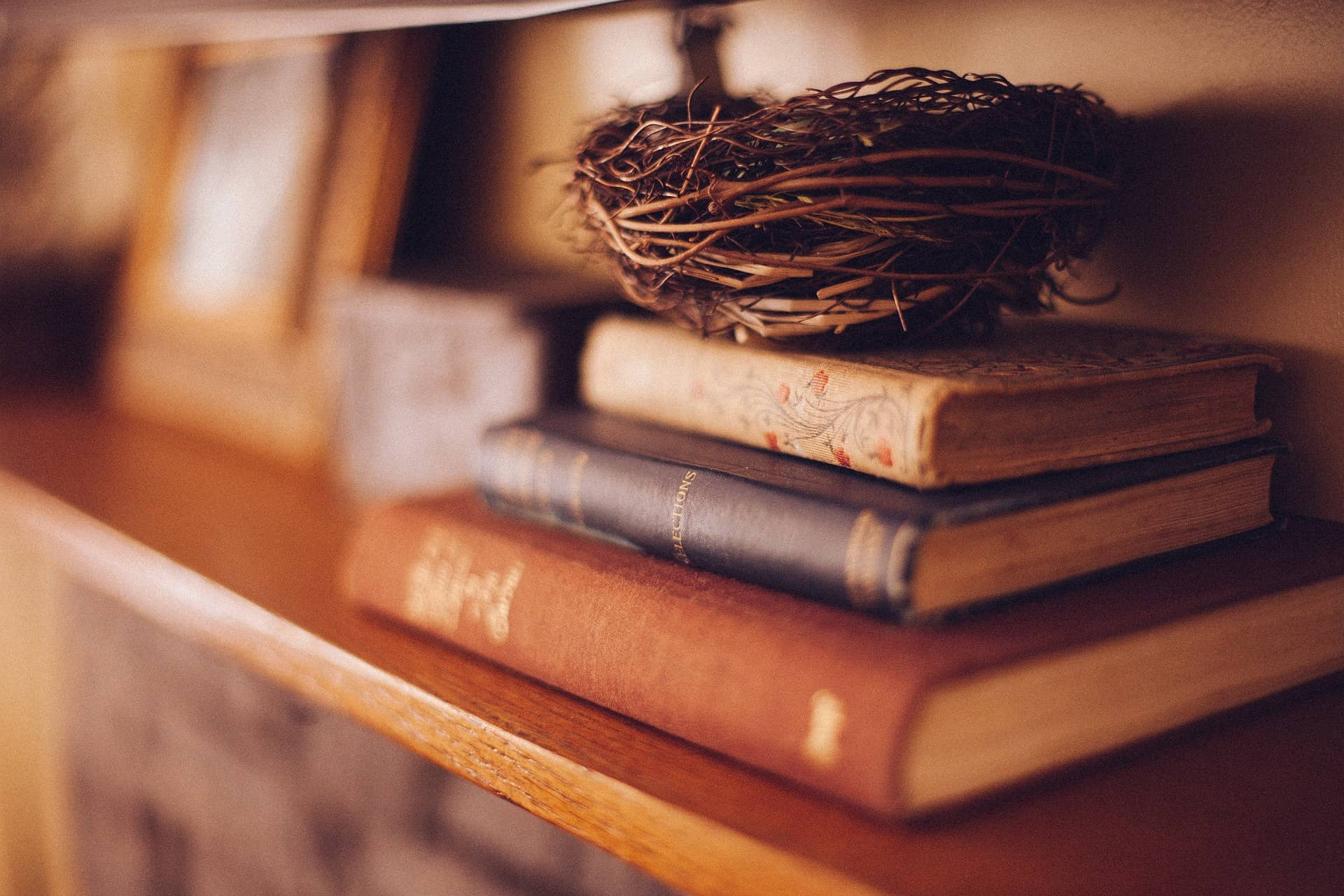 book shelf with books with birds nest on top